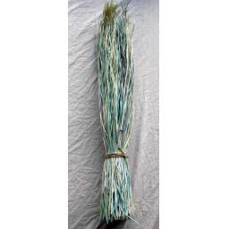 https://starbek-static.myshopblocks.com/images/tmp/nt_250_snakegrass4.8.jpg