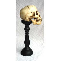 https://starbek-static.myshopblocks.com/images/tmp/nt_352_skull_700a.jpg