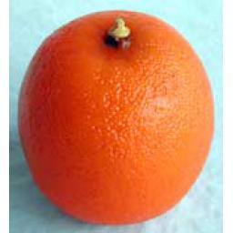 https://starbek-static.myshopblocks.com/images/tmp/nt_240_orange1.5.jpg