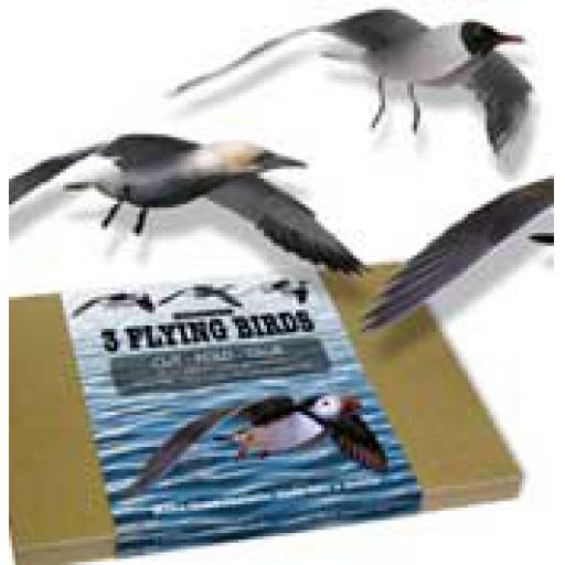 3 Flying Seabirds Kit