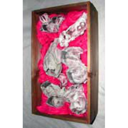 https://starbek-static.myshopblocks.com/images/tmp/se_117_barnacles1.5.jpg