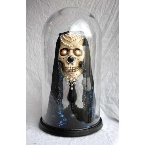 Skull No 6 in Glass Dome