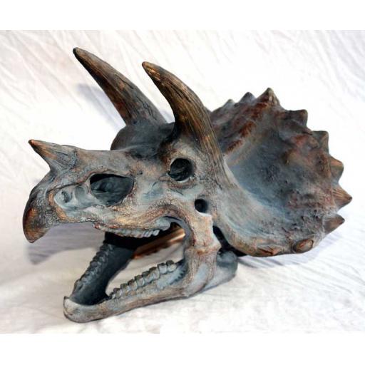 https://starbek-static.myshopblocks.com/images/tmp/nt_359_triceratops_800.jpg
