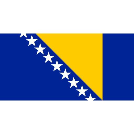 1920px-Flag_of_Bosnia_and_Herzegovina.svg.png
