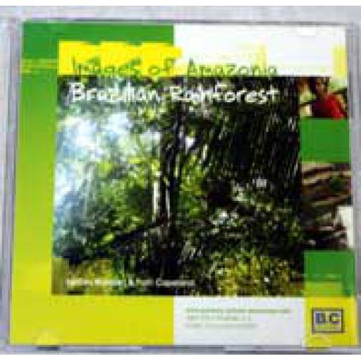 Brazilian Rainforest Images