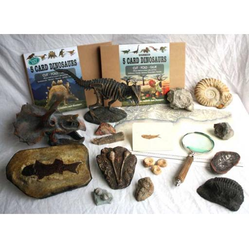 Fossils Approval Box