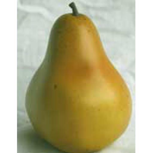 2 x Pears