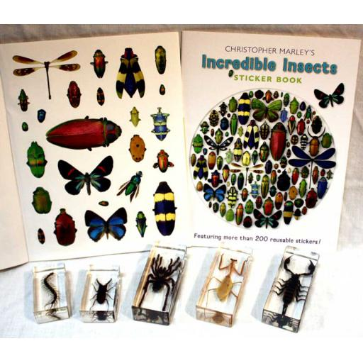 Insects Homebox