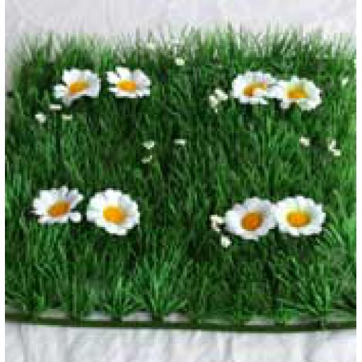 Grass & Daisy Square