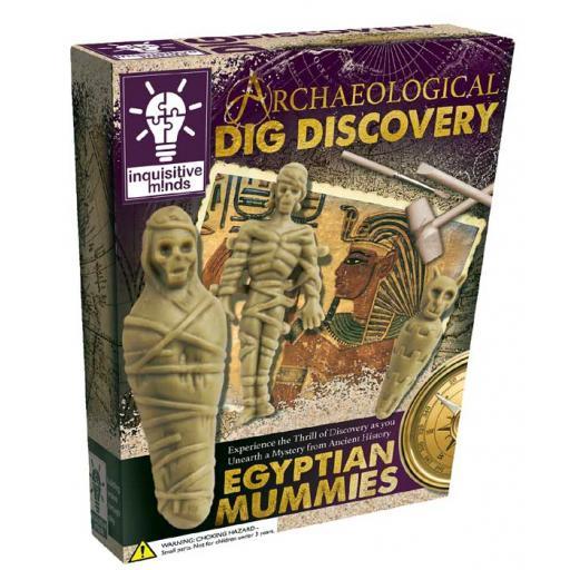 Archaeology Dig Kit