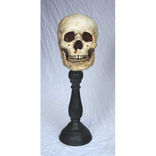 https://starbek-static.myshopblocks.com/images/tmp/nt_352_skull_700b.jpg
