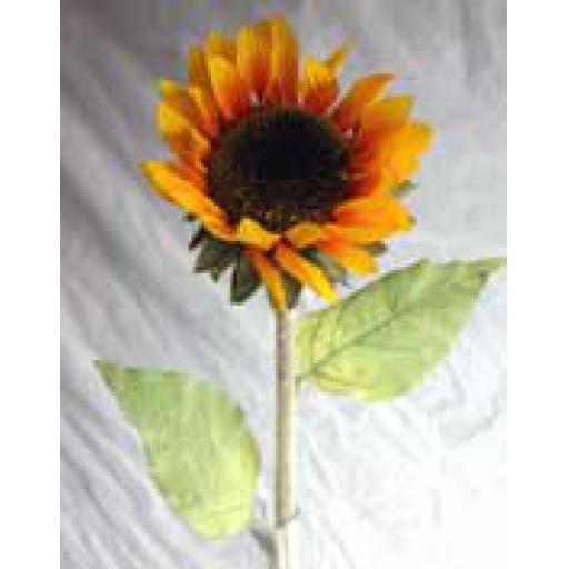 https://starbek-static.myshopblocks.com/images/tmp/nt_304_sunflower1.5.jpg