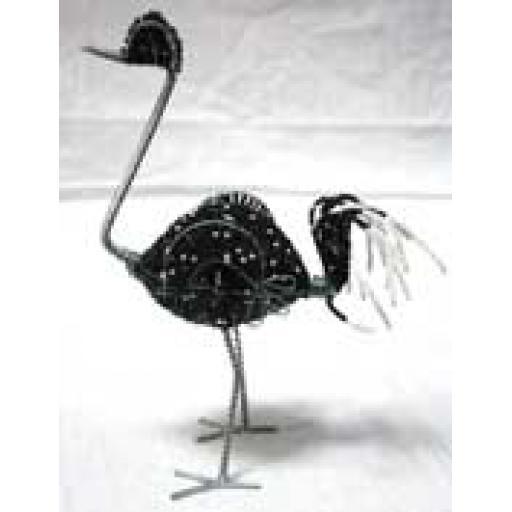 https://starbek-static.myshopblocks.com/images/tmp/af_468_ostrich1.5.jpg
