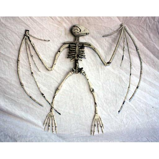 Large Bat Skeleton