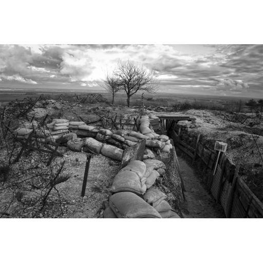 World War One Backdrop