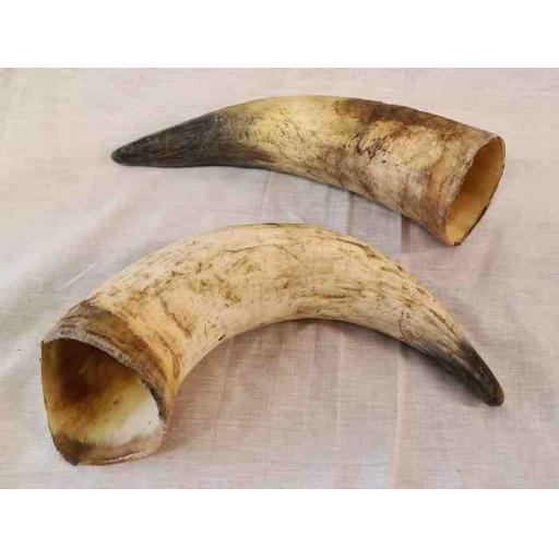 Natural Cow Horn