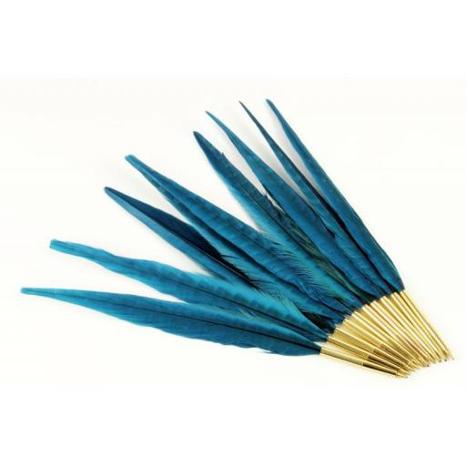 Pheasant feather Quill