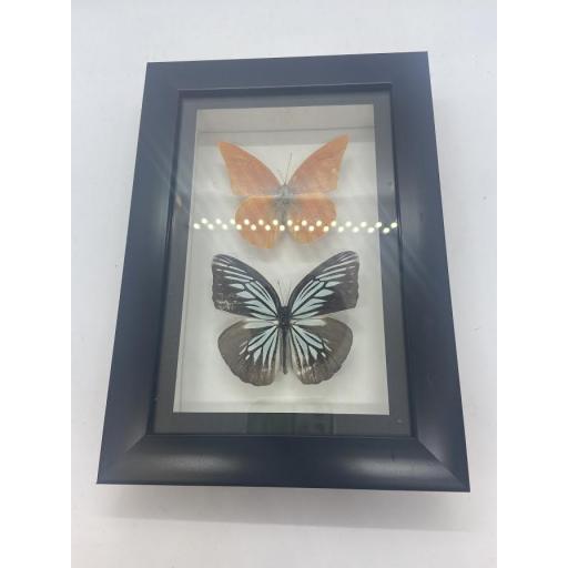 Framed Butterfly Pair